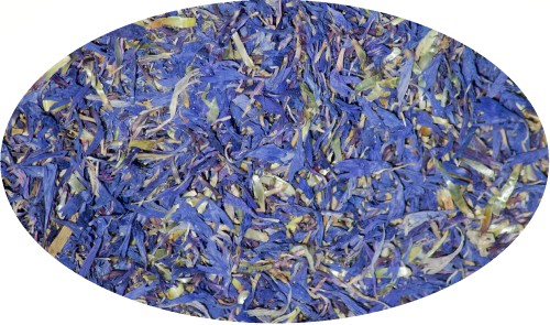 Kornblumenblüten ohne Kelch - 1kg / Flos Cyani sine Cal. extra
