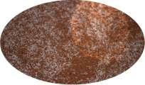 Gewürzmischung für Mettwurst Gewürz - 1kg