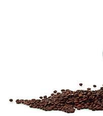 BIO - Bolivia Kaffee La Frontera - 1kg ganze Bohne