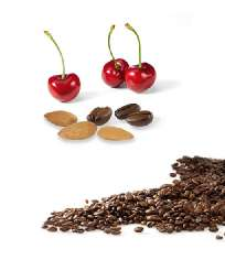flav. Coffee Almond-Cherry-Chocolate bag of 1 kg, whole bean - 100g