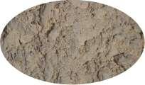 Knoblauchpulver - 1kg