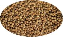 Coriander Whole - 1kg
