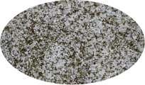 BIO - Norwegisches Algensalz - 500g