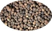 Pfeffer schwarz ganz - 1kg Gewürze