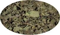 Pfefferminzblätter / Minzeblätter geschnitten - 100g / Folium Menthae PIP. AUSTR