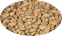 Pinienkerne - 100g