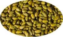 Pistazien grün - 100g
