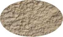Sellerieknollenpulver - 1kg Gewürze