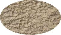 Sellerieknollenpulver - 100g