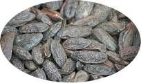 BIO - Tonkabohnen ganz - 1kg Gewürze / Semen Tonco