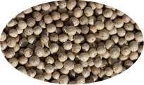 Weißer Kampotpfeffer - 500g
