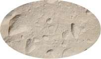 Zwiebelpulver - 500g